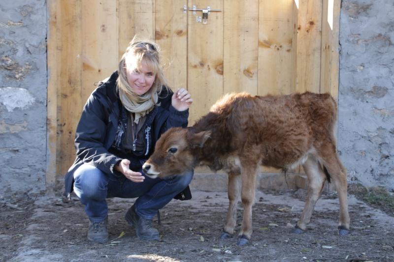 Geistheilung bei Tieren